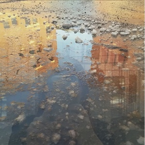 Picture of Reflections From Cell