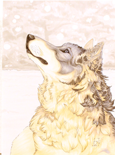 Picture of Copic Wolf